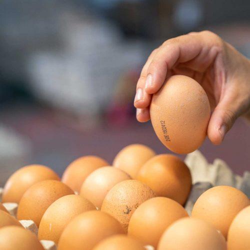 Eier vom Geflügelhof Schorba
