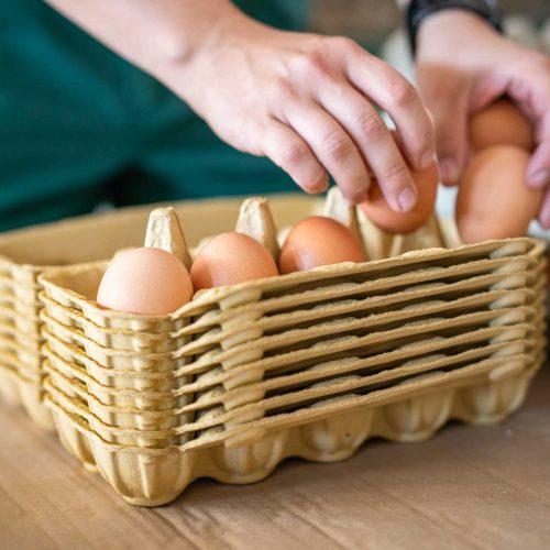 Eiersortierung - Geflügelhof Schorba